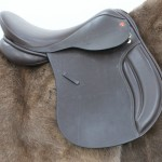 Comfort Discovery By Saddle Exchange Saddling Solutions
