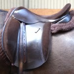 Our Original Comfort Saddles