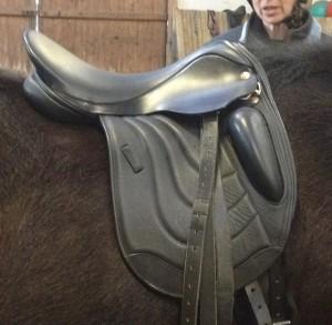 Comfort Elite Rapport Pony Mono flap Saddle by Saddle Rxchange Saddling Solutions