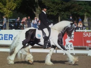 Aly Matravers and Tiger Tim Competing at the British Dressage Restricted Novice Final in the Cadence Native Pony Fit.