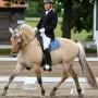 Vibeke Lonskov riding her Fjord Stallion in her Pro Pony Dressage Saddle, Flock Panel, Native Pony fit.
