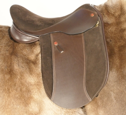 Comfort Mathew Lawrence Showing Saddle by Saddle Exchange Saddling Solutions