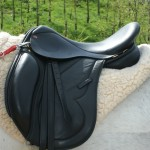 The Evolution Endurance Saddle By Saddle Exchange Saddling Solutions