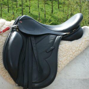The Evolution Endurance Saddle By Saddle Exchange Saddling Solutions