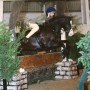 Molly and Johnny Cash jumping in their Elevation Pony at the NPS Winter Championship 2014