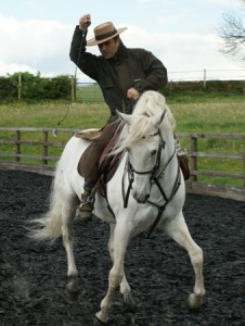 Iberian Working Equitation Saddle By Saddle Exchange Saddling Solutions