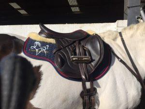 Comfort Saddles & Equine